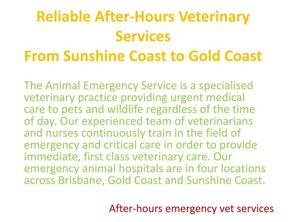 PPT - Animal Hospital PowerPoint Presentation - ID:7419667