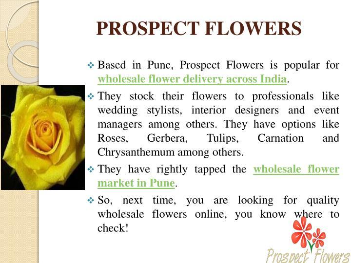 PROSPECT FLOWERS