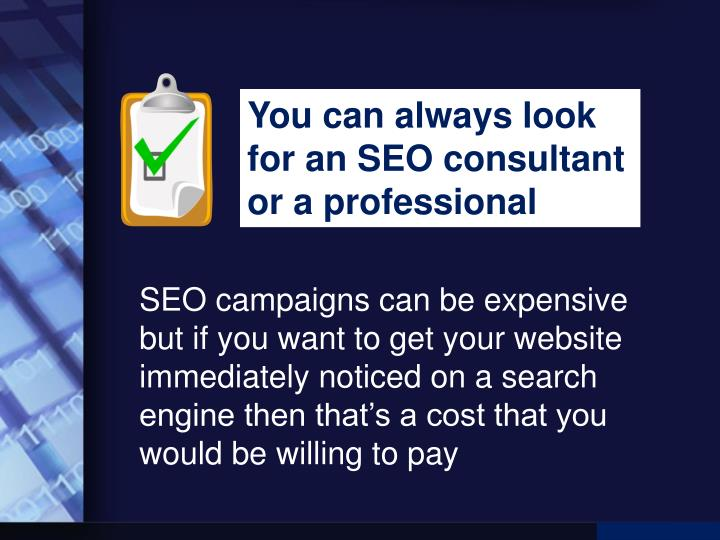 You can always look for an SEO consultant or a professional