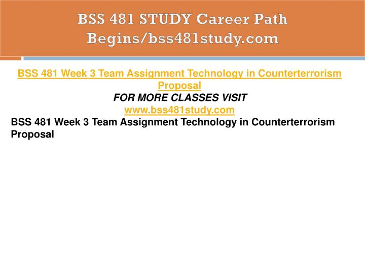 BSS 481 STUDY Career Path Begins/bss481study.com