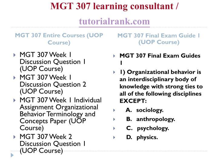 Mgt 307 learning consultant tutorialrank com1