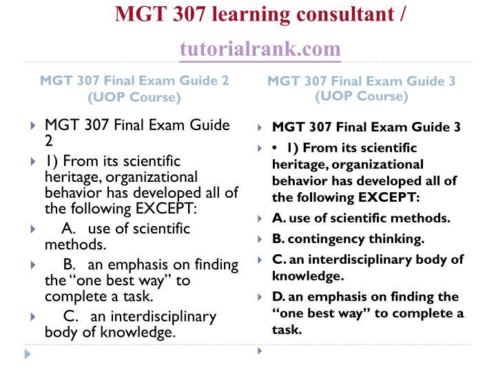 Mgt 307 learning consultant tutorialrank com2