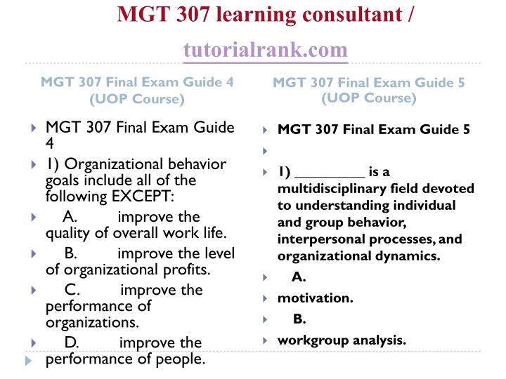 MGT 307 learning consultant /