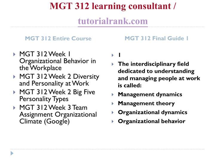 Mgt 312 learning consultant tutorialrank com1
