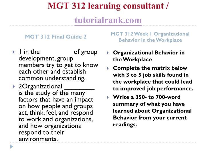 Mgt 312 learning consultant tutorialrank com2
