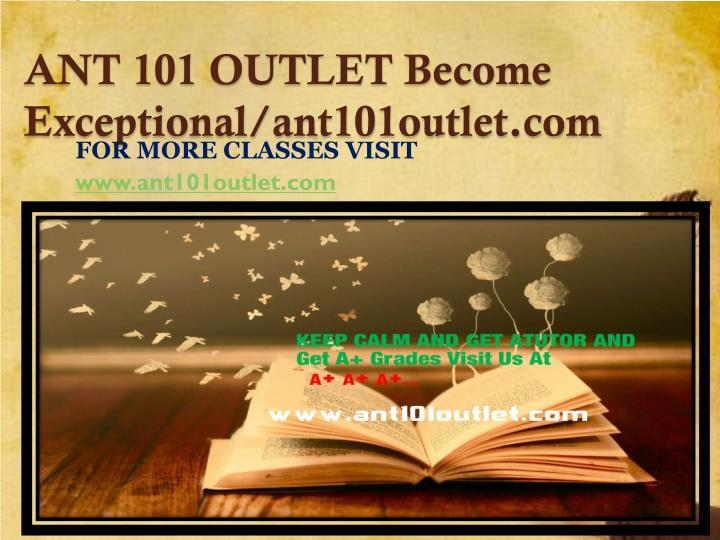 Ant 101 outlet become exceptional ant101outlet com