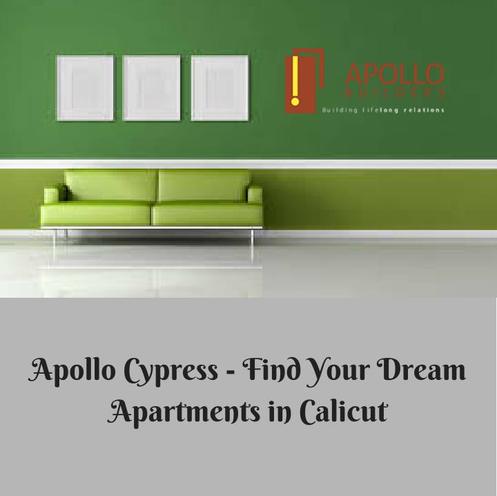 Apollo Cypress - Find Your Dream
