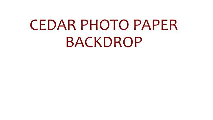 Cedar photo paper backdrop