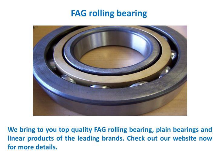 Fag rolling bearing