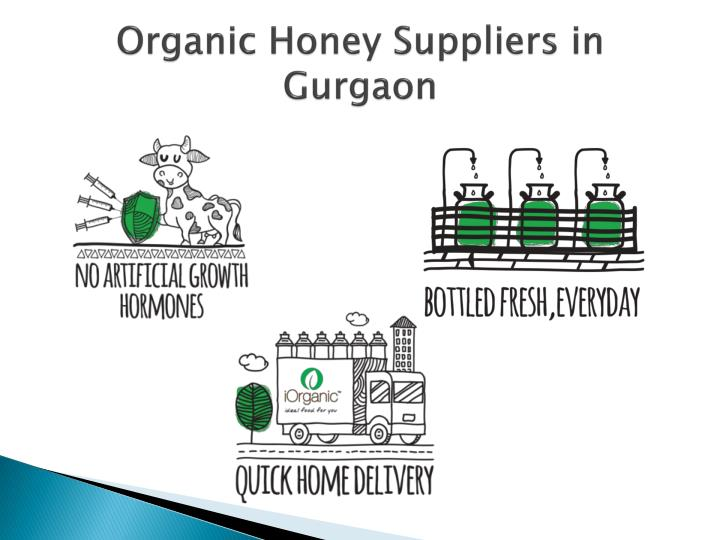 Organic Honey Suppliers in