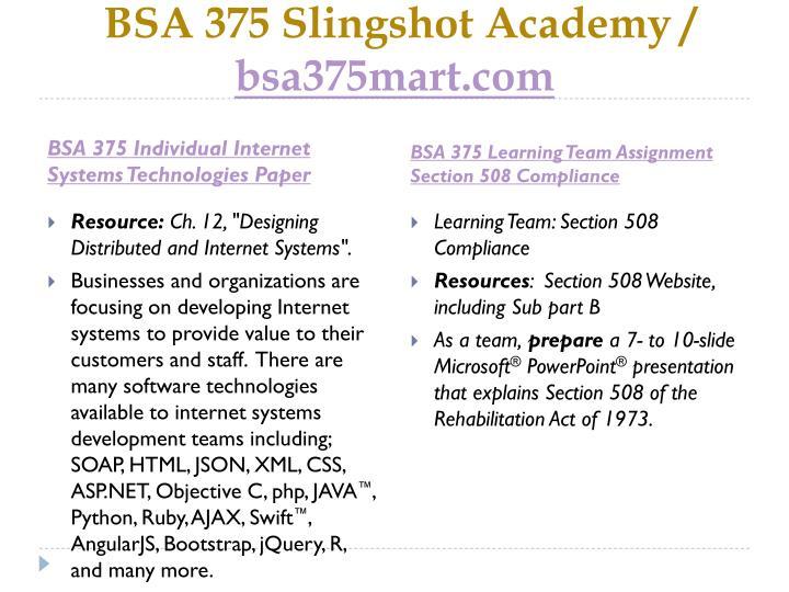 Bsa 375 slingshot academy bsa375mart com2