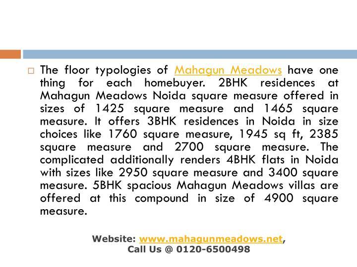 The floor typologies of