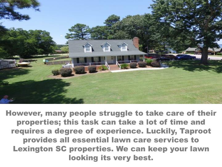 However, many people struggle to take care of their properties; this task can take a lot of time and requires a degree of experience. Luckily, Taproot provides all essential lawn care services to Lexington SC properties. We can keep your lawn looking its very best.