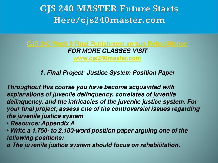 cjs 240 justice system position paper