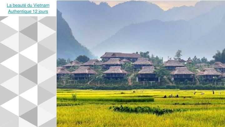 La beauté du Vietnam Authentique 12 jours