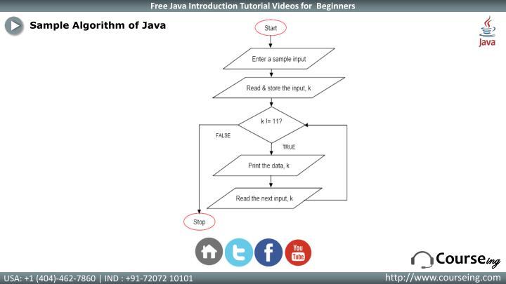 Sample Algorithm of Java