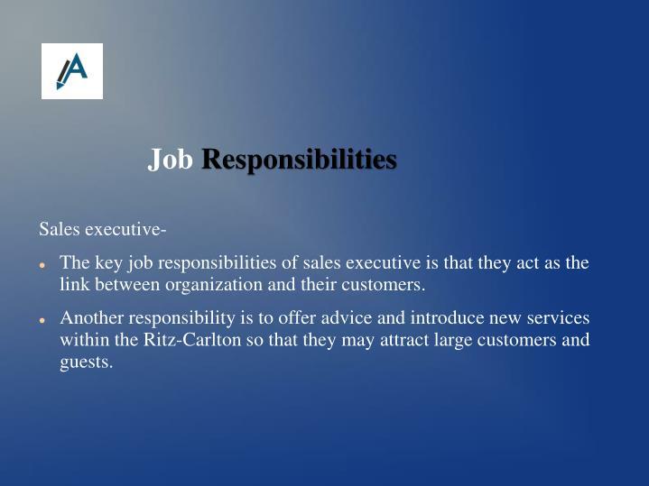 Sales executive-