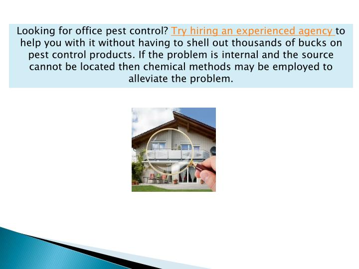 Looking for office pest control?