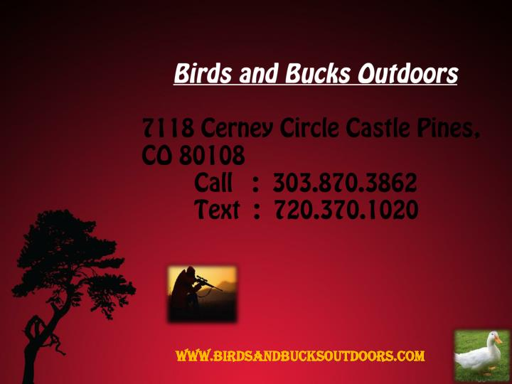 Birds and Bucks Outdoors