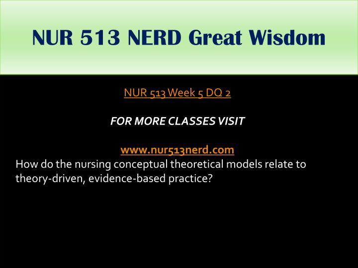 NUR 513 NERD Great