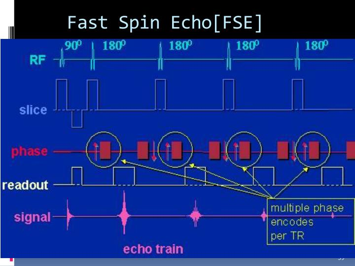 Fast Spin Echo[FSE]