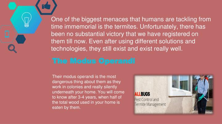 One of the biggest menaces that humans are tackling from time immemorial is the termites. Unfortunat...