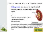 causes and factor for kidney stone