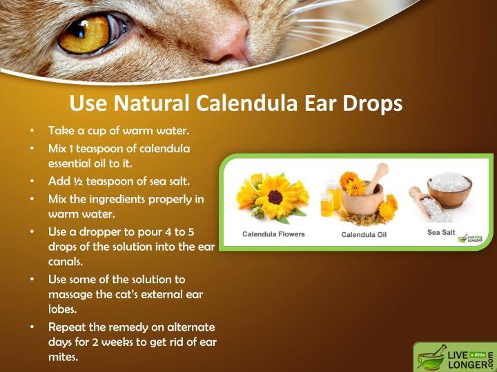 Use Natural Calendula Ear Drops