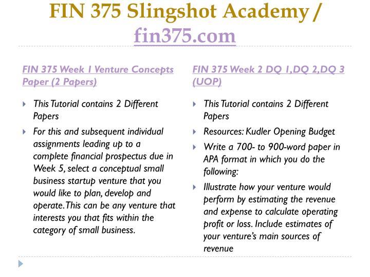 Fin 375 slingshot academy fin375 com2