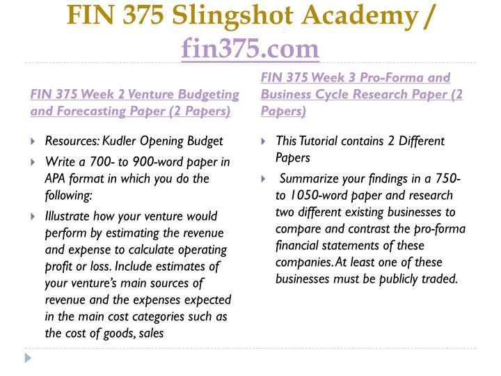 FIN 375