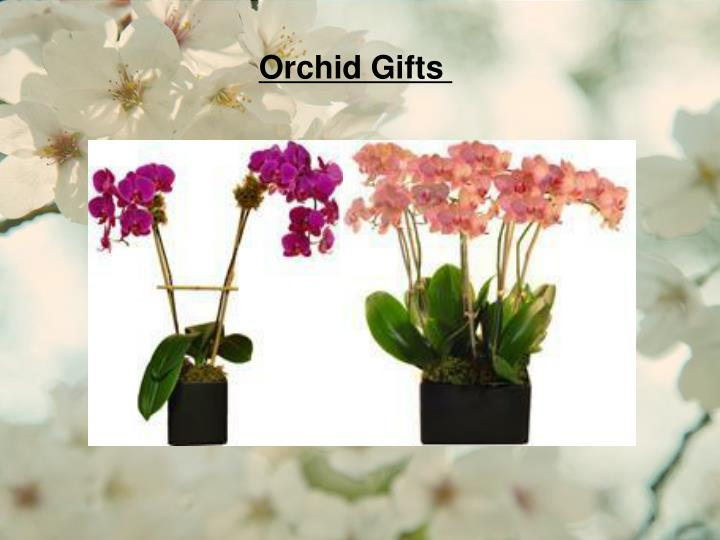 Orchid Gifts