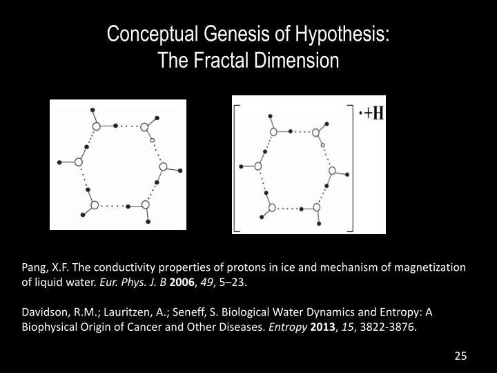 Conceptual Genesis of Hypothesis: