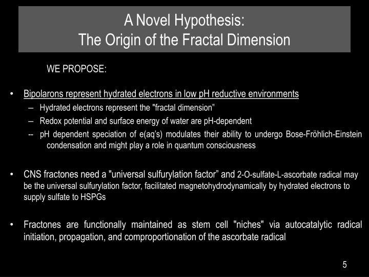 A Novel Hypothesis: