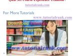qrb 501 course experience tradition tutorialrank com