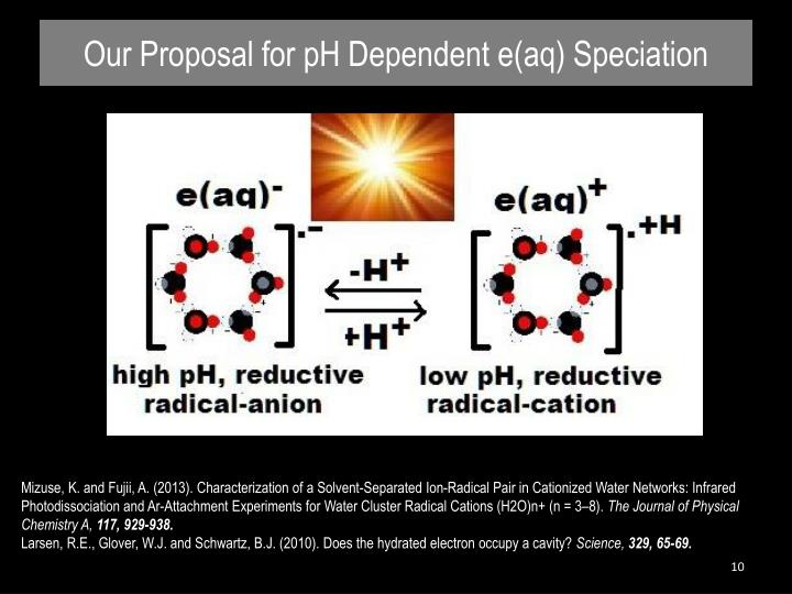 Our Proposal for pH Dependent e(aq) Speciation