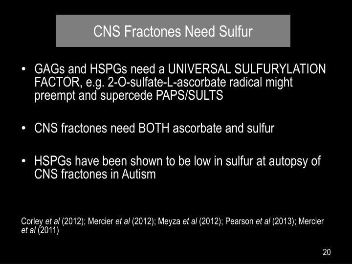 CNS Fractones Need Sulfur