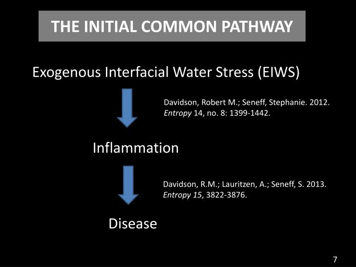 THE INITIAL COMMON PATHWAY