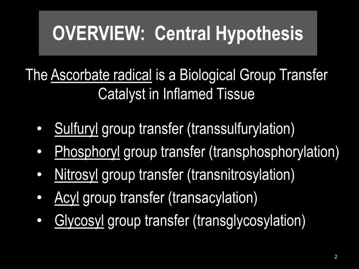 OVERVIEW: Central Hypothesis