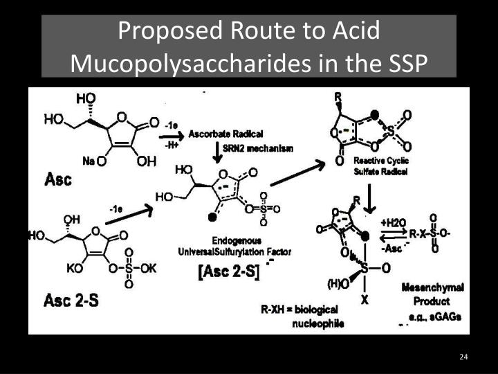 Proposed Route to Acid