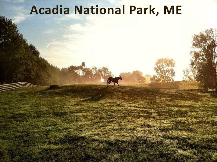 Acadia national park me