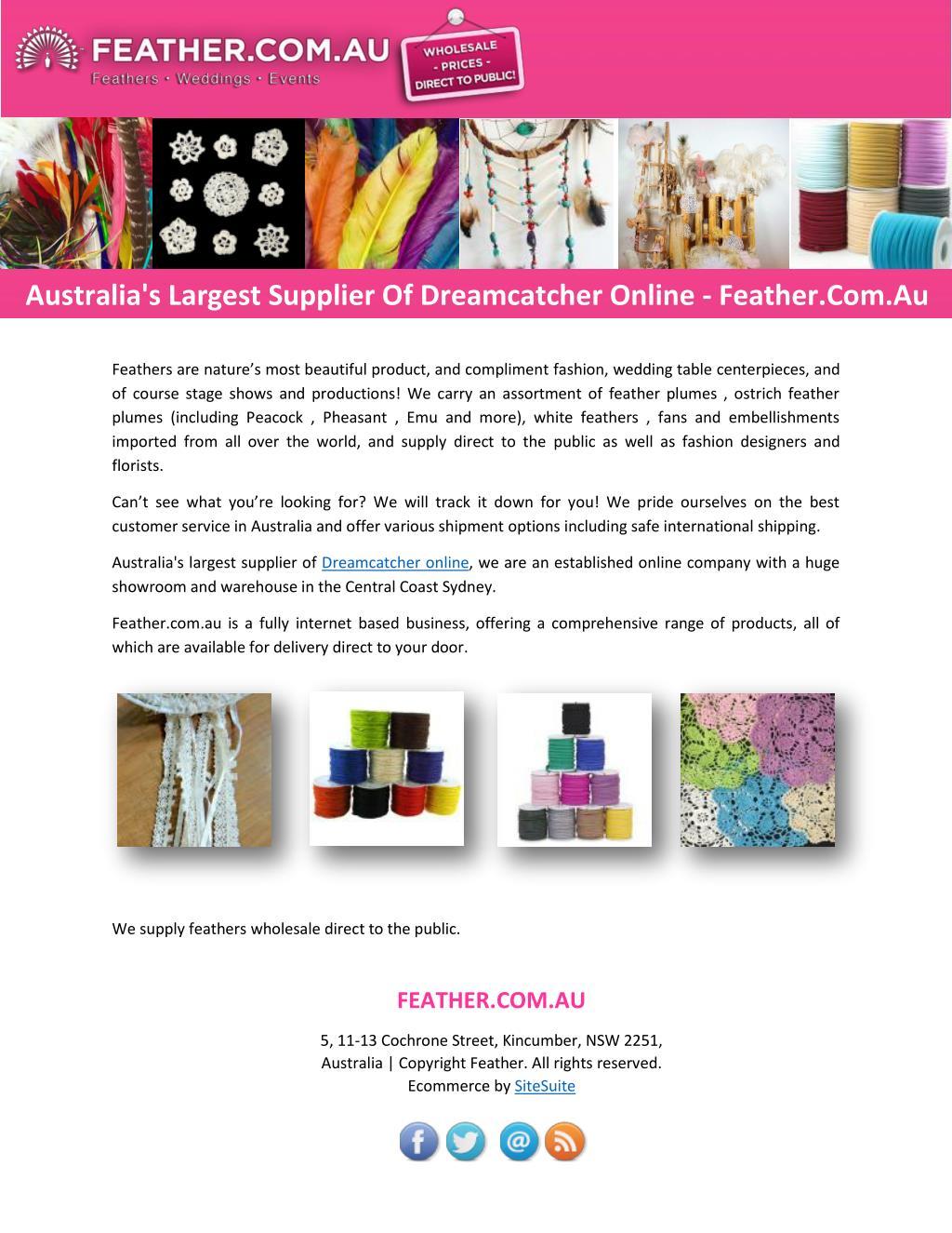 Ppt Australia S Largest Supplier Of Dreamcatcher Online Feather Com Au Powerpoint Presentation Id 7428321