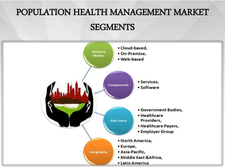 Population health management market segments