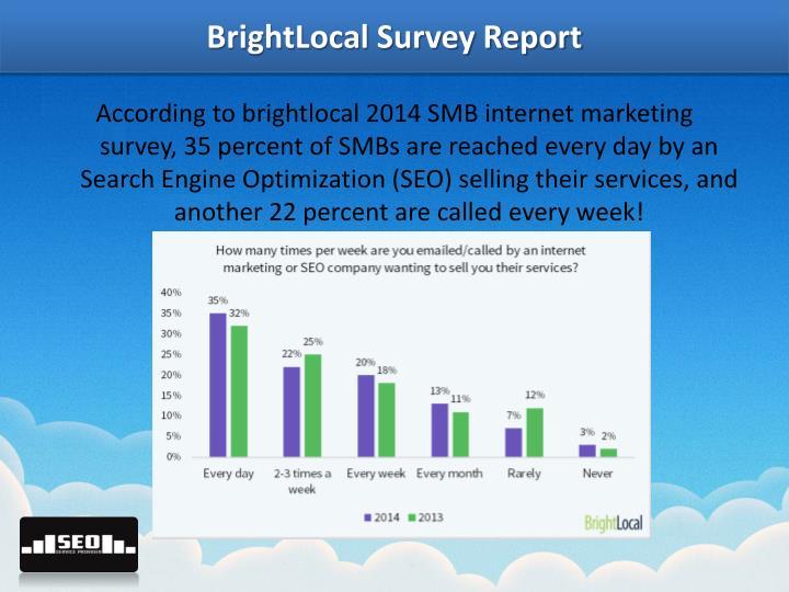 BrightLocal Survey Report