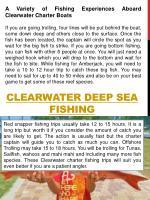 clearwater deep sea fishing1