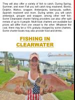 fishing in clearwater