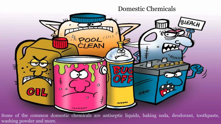 Domestic Chemicals