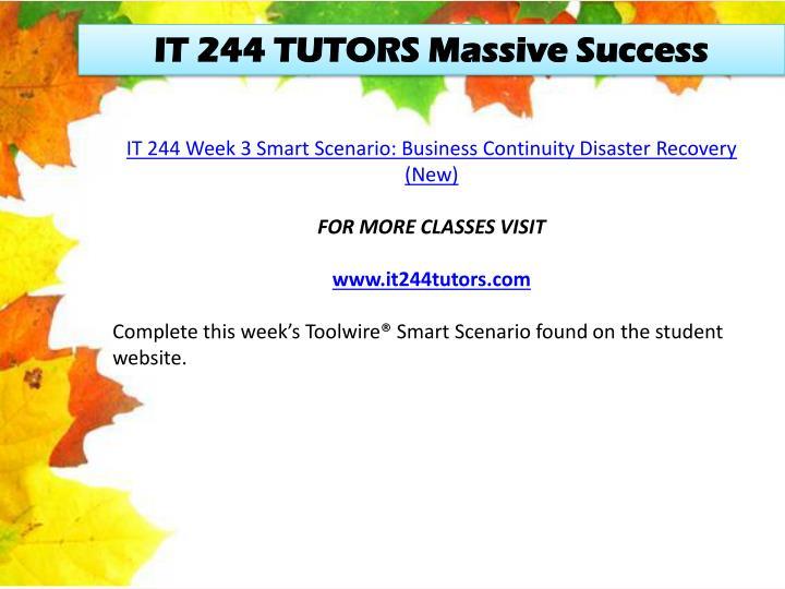 IT 244 TUTORS Massive Success