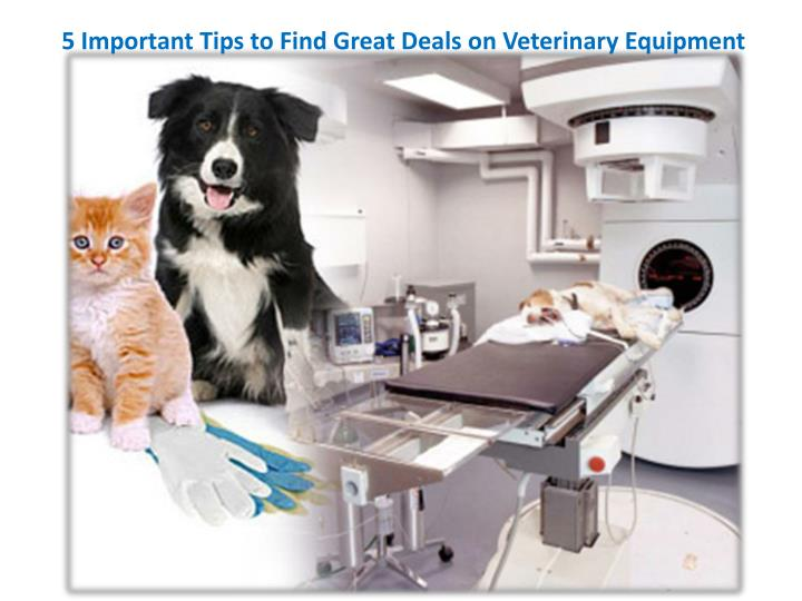 5 Important Tips to Find Great Deals on Veterinary Equipment