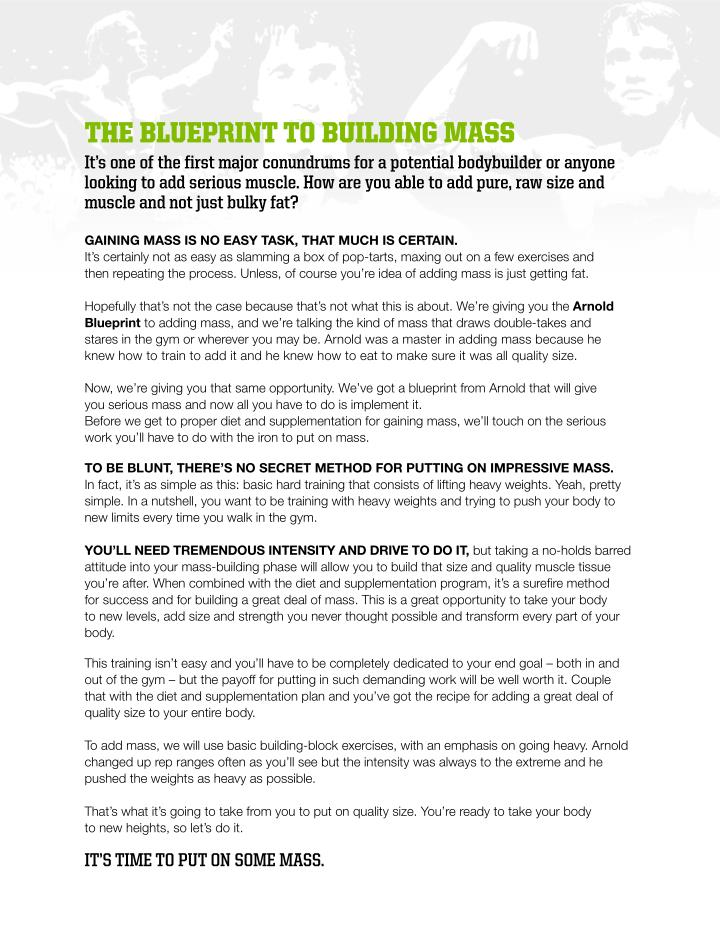 THE BLUEPRINT TO BUILDING MASS