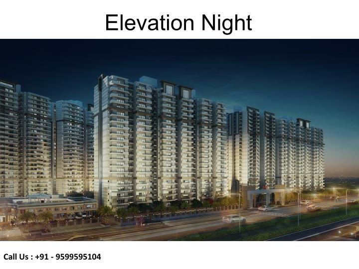 Elevation Night